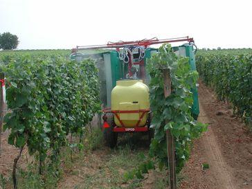 Tunnelspritzgerät in einem Weingarten bei der Ausbringung eines Pflanzenschutzmittels.