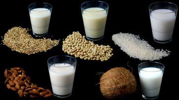 Milchersatzprodukte gibt es mittlerweile aus Hafer, Soja, Reis, Mandeln und Kokusnuss.  Bild: Verbraucherzentrale Nordrhein-Westfalen e.V. Fotograf: Verbraucherzentrale NRW