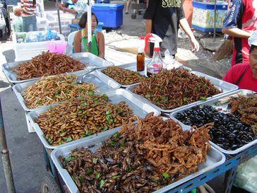 Frittierte Insekten in einem Markt in Bangkok, Thailand