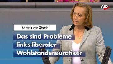 Beatrix von Storch (2020)