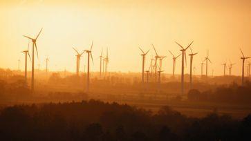 """Stoppt grüne Umweltzerstörer: Greenpeace, Deutsche Umwelthilfe & """"Erleuchtete"""" wollen Naturschutz für die Ausbreitung von Windkraftmaschinen plattmachen."""