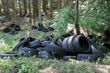 Übersichtsaufnahme der im Wald abgelagerten Reifen Bild: Polizeidirektion Montabaur (ots)