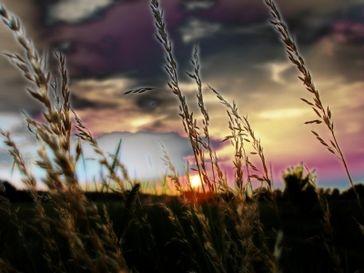 Bild: Grace Winter / pixelio.de