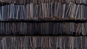 Zehntausende Holzstämme lagern auf dem Gelände einer der großen Fabriken in Rumänien.  Bild: ZDF Fotograf: ZDF/Manfred Karremann