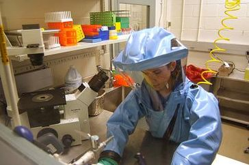 A researcher working with the Ebola virus while wearing a BSL-4 positive pressure suit to avoid infection