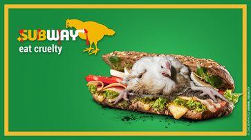 Europaweiter Protest: Subway drückt sich um Tierschutz