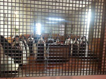Blick durch das Klausurgitter in den Nonnenchor