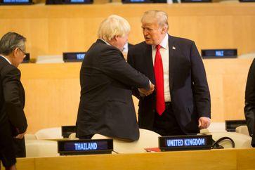 Boris Johnson und Donald Trump (2017)