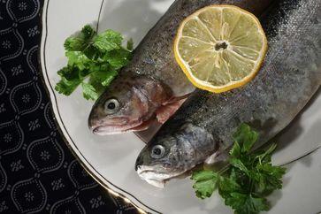 Fisch ist wegen des hohen Gehalts an Omega-3-Fettsäuren sehr gesund. Wie diese Fettsäuren im Körper wirken, das haben Forscher der Uni Jena und des Jenaer Uniklinikums untersucht. Quelle: Foto: Jan-Peter Kasper/FSU (idw)