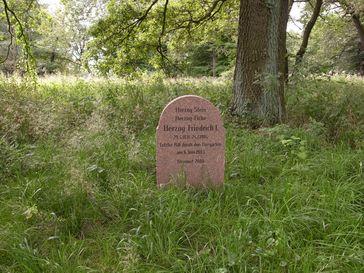 Herzog-Stein in Dessau