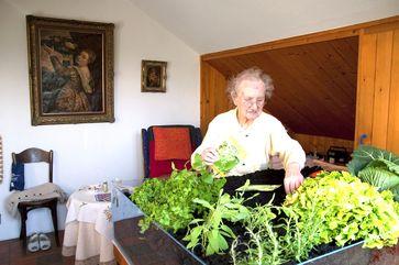 Eine Selbstversorgerin - Jeder zweite achtet darauf wo und wie Lebensmittel herkommen und angebaut werden (Symbolbild)