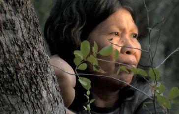 Paraguays Ayoreo-Indianer waren Anfang des Jahres Opfer eines Fälschungsskandals. Bild: Survival
