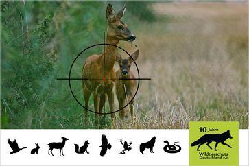 Bild: Wildtierschutz Deutschland e.V. Fotograf: Timo Litters