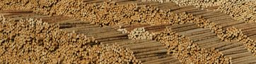 Holz als Konstruktionswerkstoff
