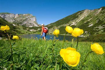 BILD zu OTS - Bergwandern macht Spaß und den Kopf frei. Die Region Alpbachtal Seenland hat für Wanderer, je nach Variante die passende Natur.