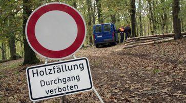 """Bild: """"obs/MDR Mitteldeutscher Rundfunk/MDR/Hoferichter & Jacobs"""""""