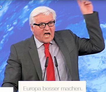 Frank Walter Steinmeier (2014), Archivbild