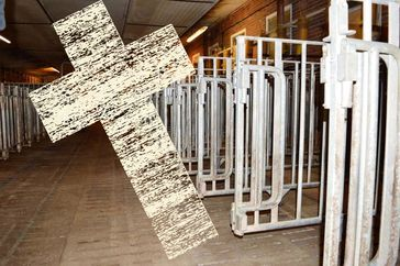 Bauernhofsterben dank EU-Agrarmarkt: Agrarkonzerne mit Lobby werden gefördert, der Rest klein gemacht... (Symbolbild)