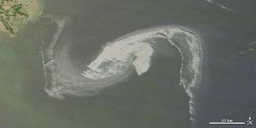 Satellitenbild des Mississippideltas vom 1. Mai 2010. Der Ölteppich ist in der Bildmitte erkennbar. Bild: NASA