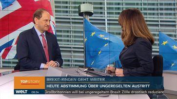 """Lambsdorff auf Nachrichtensender WELT: Brexit-Aufschub nur bei zweitem Referendum. Bild: """"obs/WELT/WeltN24 GmbH"""""""