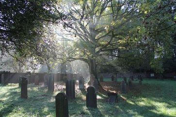 Friedhof: Recyclingcenter für nicht mehr benötigte Körper. Das Bewußtsein lebt weiter. (Symbolbild)