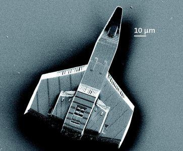 Drucken auf der Mikrometerskala: Die Schreibdauer für ein Miniaturraumschiff  reduziert sich ohne Qualitätsverlust auf weniger als eine Minute Quelle: (Foto: Nanoscribe) (idw)
