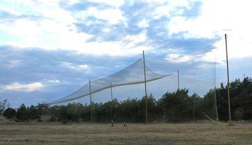 Fangvorrichtung für Fledermäuse. Quelle: Foto: IZW/Oliver Lindecke (idw)