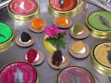 Verschiedene Kaviarsorten