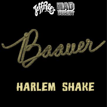 """Cover """"Harlem Shake"""""""