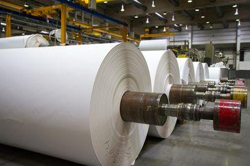Bild: Verband Deutscher Papierfabriken Fotograf: Charlotte Steiner