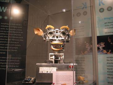 Künstliche Intelligenz ( KI )