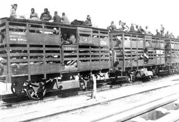 Transport von Armeniern in sogenannten Hammelwagen der Anatolischen Bahn (1915)