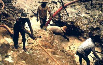Hunderte Goldschürfer arbeiten illegal auf dem Gebiet der Yanomami in Brasilien und Venezuela. Bild: Survival