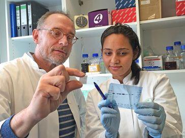 Bei der Auswertung der Ergebnisse: Prof. Dr. Hubert Schorle und Neha Sharma vom Institut für Patholo Quelle: © Foto: Simon Schneider/Labor Schorle (idw)