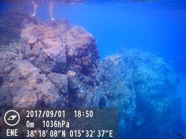 Belebtes Felsenriff als untermeerische Fortsetzung der Felsenküste (Symbolbild)