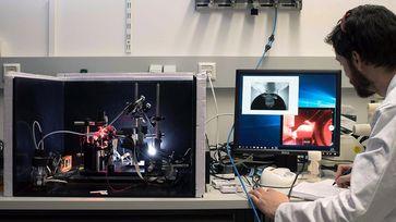 Bild: Technische Universität München (TUM)