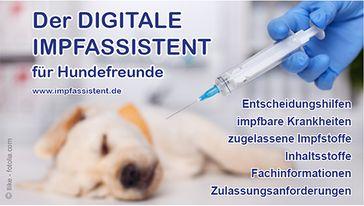 """Neu: """"Digitaler Impfassistent für Hundefreunde"""" zum Download"""