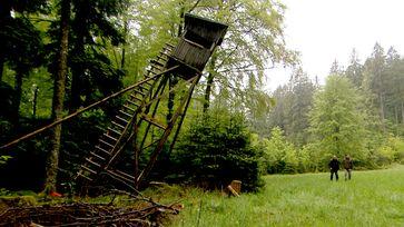 Bild: SWR (S2+). SWR-Presse/Bildkommunikation, Baden-Bade