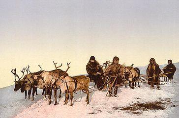 Rentierschlitten in Russland um 1900