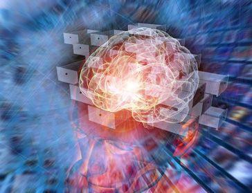 """Das """"Schubladendenken"""" oder die Fähigkeit, Kategorien zu bilden, ist eine hochentwickelte Funktion des Gehirns Quelle: Illustration: IMP (idw)"""