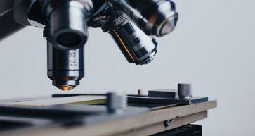 Wissenschaft Mikroskop