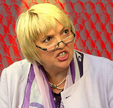 Claudia Roth (2015), Archivbild