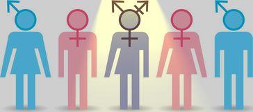 Gender: Ideologie statt Naturwissenschaft