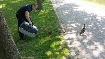 Tierrettung. Bild: Feuerwehr Kleve