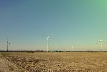 """Agrarwüste in Deutschland: Alles dank """"Agro-Landwirtschaft"""", was von Aggressiver Landwirtschaft kommt (Symbolbild)"""