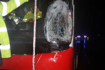 beschädigter Bus nach Pferdeunfall