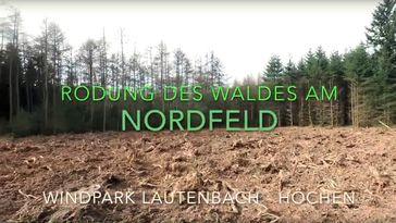 Hier sieht man Rodungsflächen im Wald zur Errichtung von Windrädern bei Ottweiler-Lautenbach.
