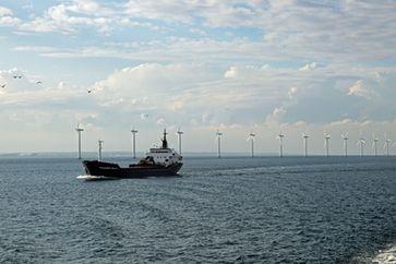 Offshore Windparks: Welche verheerenden Folgen der Infraschall und die elektromagnetischen Felder auf das Leben im Meer haben, ist wenig erforscht - gebaut wird jedoch schon fleisig (Symbolbild)