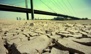 Dürre in der Agrarwüste (Symbolbild)