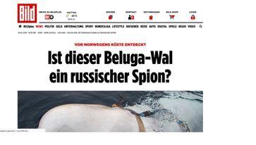 "Bild: Screenshot Website ""Bild-Zeitung"""